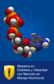 2017-I MAESTRIA INTERNACIONAL DIABETES Y OBESIDAD MENCION EN MANEJO NUTRICIONAL - INTERNACIONALES
