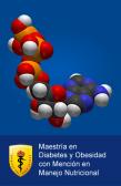 2017-I MAESTRIA INTERNACIONAL DIABETES Y OBESIDAD MENCION EN MANEJO NUTRICIONAL - NACIONALES